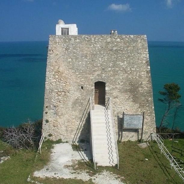 Torre Monte Pucci