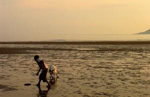 Gargano coast and beach
