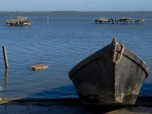 Barche Lago di Lesina