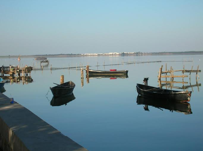 Lago di Lesina pesca