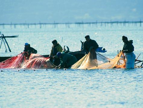 Pescatori sul lago di Varano